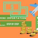 Mini importation guide step by step