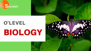 SS2 First Term Biology Senior Secondary School