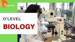 SS1 Second Term Biology Senior Secondary School