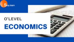 SS3 First Term Economics Senior Secondary School